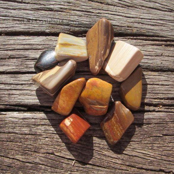 Lemn Pietrificat - Cristale naturale - Pietre semipretioase